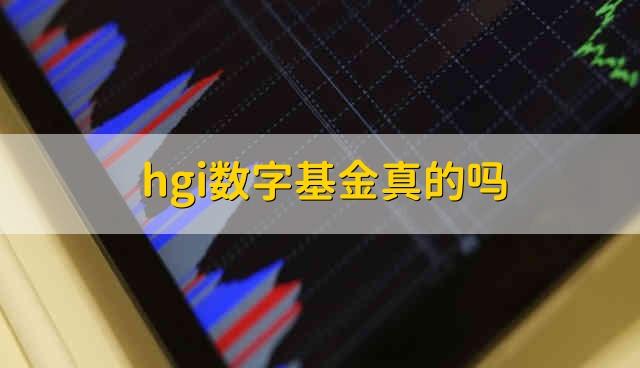 hgi数字基金真的吗 hgi数字基金靠谱吗