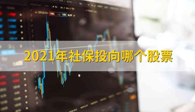 2021年社保投向哪个股票 2021年社保基金重仓股